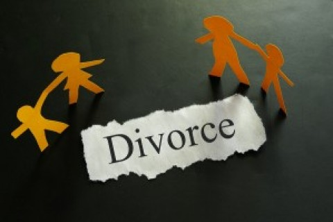 Pro Se Divorce Mediation